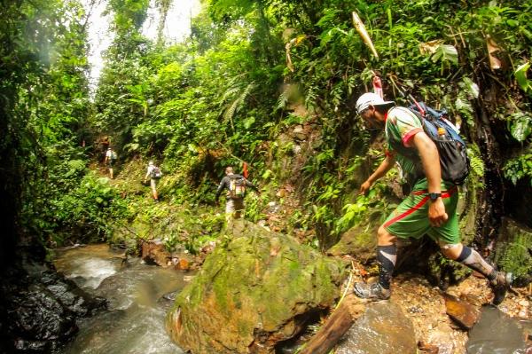 jungleultra